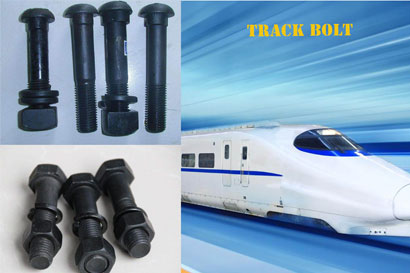 The Unknown Knowledge of Track Bolt for Beginners